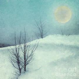 Snow Moon  by Priska Wettstein
