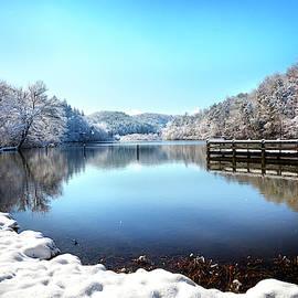Snow on the Lakeshore by Debra and Dave Vanderlaan