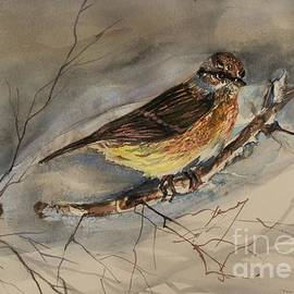 Snow Sparrow by Mindy Newman