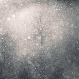 Snow squall by Murray Rudd