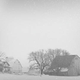 Snow Storm by Susan Buscho