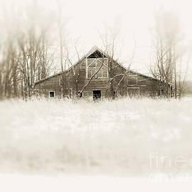 Snowbarn by Curtis Tilleraas