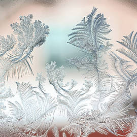 Snowflake Patterns on Glass by Terry Walsh