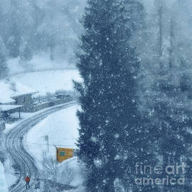 Snowing by Flo Photography