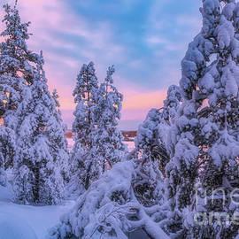 Snowy 5 by Veikko Suikkanen