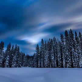 Snowy Bitterroot Midnight by Matt Hammerstein