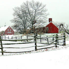 Snowy day in Hollis NH by Janice Drew