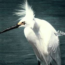 Snowy Egret Bad Hair Day by Kathryn Dickinson