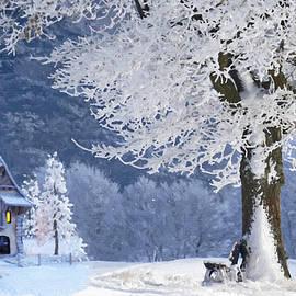 Snowy January Evening - DWP1468035 by Dean Wittle
