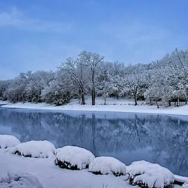 Snowy Pond by Shelly Gunderson
