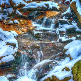 Snowy Stream by Dennis Baswell