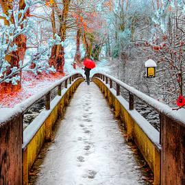 Snowy Walk by Debra and Dave Vanderlaan