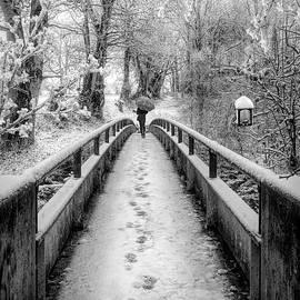 Snowy Walk in Black and White  by Debra and Dave Vanderlaan