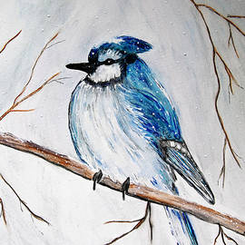 Snowy Winter Blue Jay by Barbara Chichester