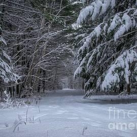 Snowy Winter Evening by Jan Mulherin