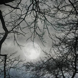 Snowy Winter Ohio Moon by Janice Pariza