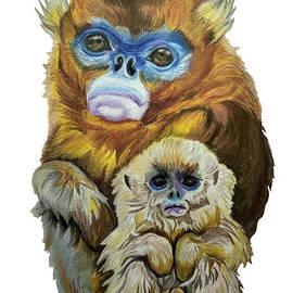 Snub-nosed Monkeys  by Maria Sibireva