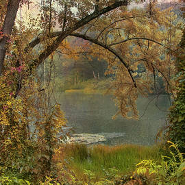 Soft afternoon rain on the pond by John Rivera