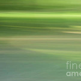 Soft Greens by Ruth H Curtis