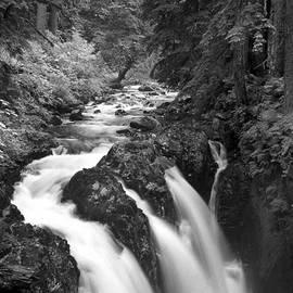 Sol Duc Falls Monochrome by Douglas Taylor