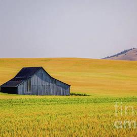 Solitary Barn by Bob Lentz