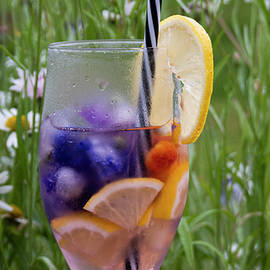 Sommar Limonade On Blue Wild Meadow Cornflowers by Tamara Sushko