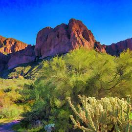 Sonoran Desert Splendor by Lorraine Baum