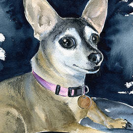 Sophie - Chihuahua dog painting by Dora Hathazi Mendes