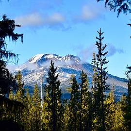 South Sister Through the Trees by Dana Hardy