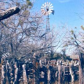 South Texas Windmill by Don n Leonora Hand