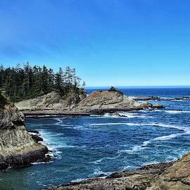 Southern Oregon Coast by Dana Hardy