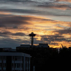 Space Needle Sunset  by Cathy Anderson