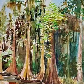 Spanish Moss by Yuson Yi