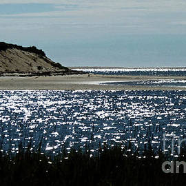 Sparkles on the Beach by Sharon Williams Eng