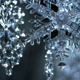 Sparkling Snowflakes 2 by Yvonne Wright