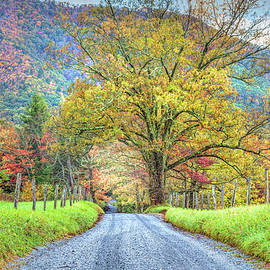 Sparks Lane at Cades Cove Townsend Tennessee by Debra and Dave Vanderlaan