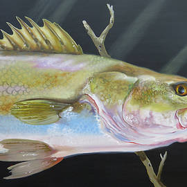 Speckled Trout by Phyllis Beiser