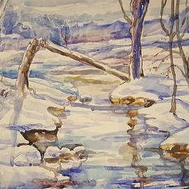Spencer Creek in the winter by Alla Savinkov