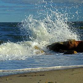 Splash Up - Cape Cod Bay by Dianne Cowen