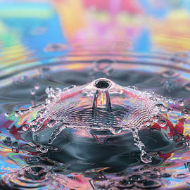 Splashing Time by Susan Leonard