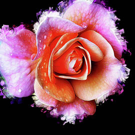 Splashy Rose by Bill Tiepelman