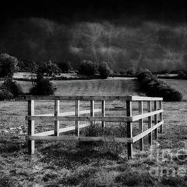 Split Rail Fence in the Country  by Doc Braham