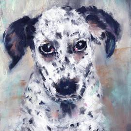 Spot the Dot by Lynne Adams