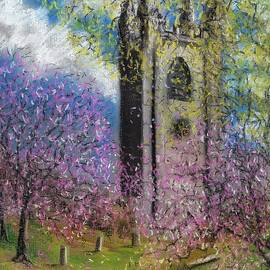 Spring Blossom at St Mary's by Philip Harvey