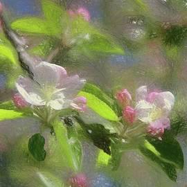 Spring Blossom by Kathy Bassett