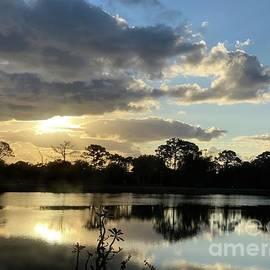 Spring Daybreak by AnnaJo Vahle