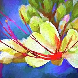 Spring desert flowers by Tatiana Travelways