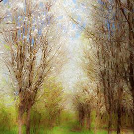 Spring Dreams ap by Dan Carmichael