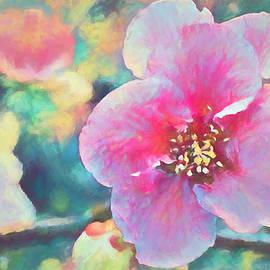Spring Fancy by Pamela Cooper