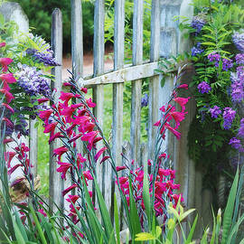 Spring Flowers at the Garden Gate - Colonial Williamsburg by Marilyn DeBlock